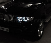 Pack de LEDs Angel eyes para BMW X5 (E53) - Estándar