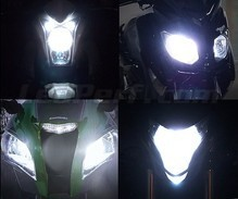 Pack de bombillas de faros Xenón Efecto para Can-Am RT-S (2011 - 2014)