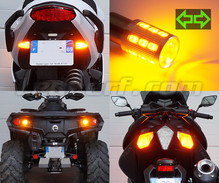 Pack de intermitentes traseros de LED para Harley-Davidson Road King 1745